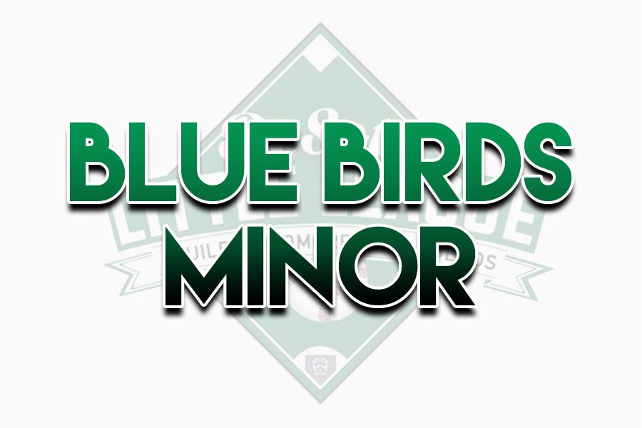 Blue Birds Minor